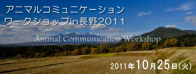 nagano2011-05.jpg